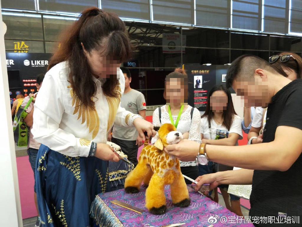 寵物展毛孩慘變長頸鹿!網友驚訝七彩卡通狗 「原來唔喺著咗衫?」