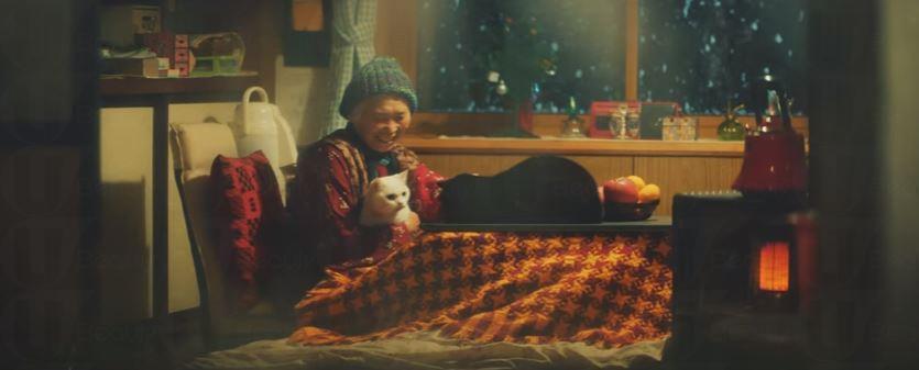 眼見獨居婆婆失去笑容  兩隻貓咪睇書睇碟博君一笑