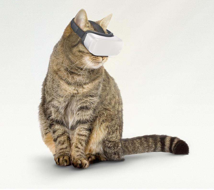 貓仔都可以用VR打機? 外國推貓貓虛擬實境眼罩