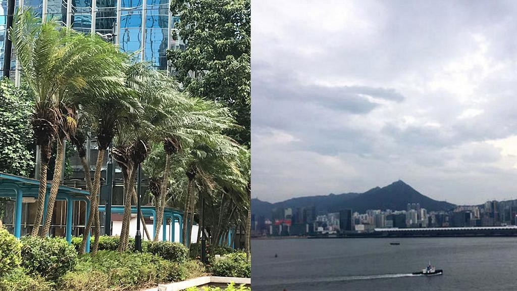 【颱風山竹】歷代最強颱風曾奪183人命 回顧半世紀十四個10號風球