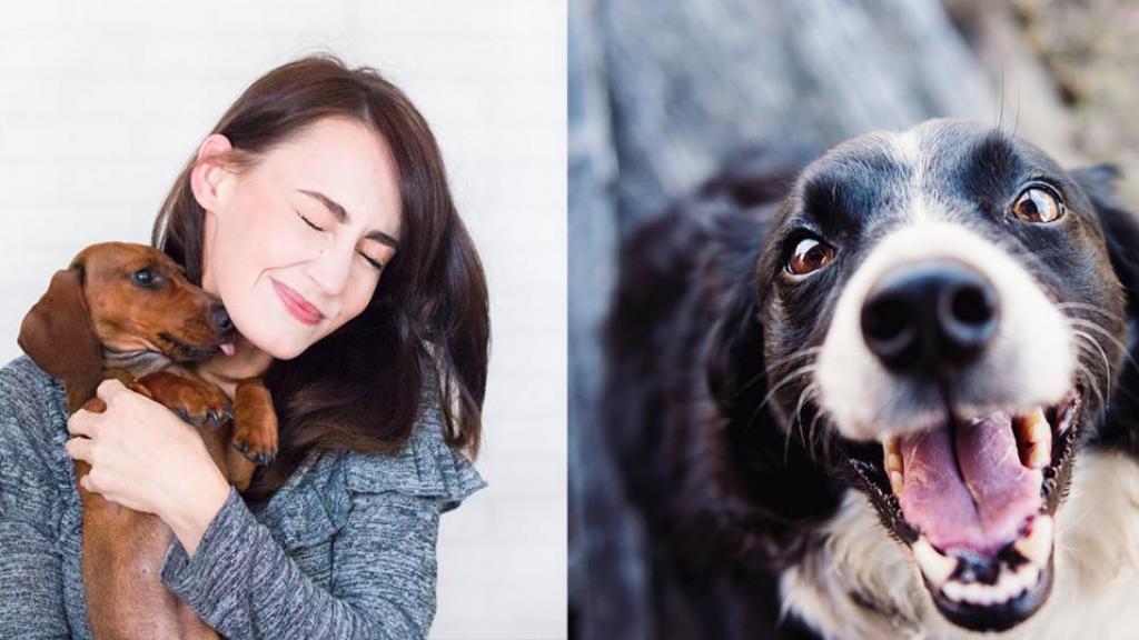 狗狗係心機婊?! 研究:有人望時狗仔表情特別多