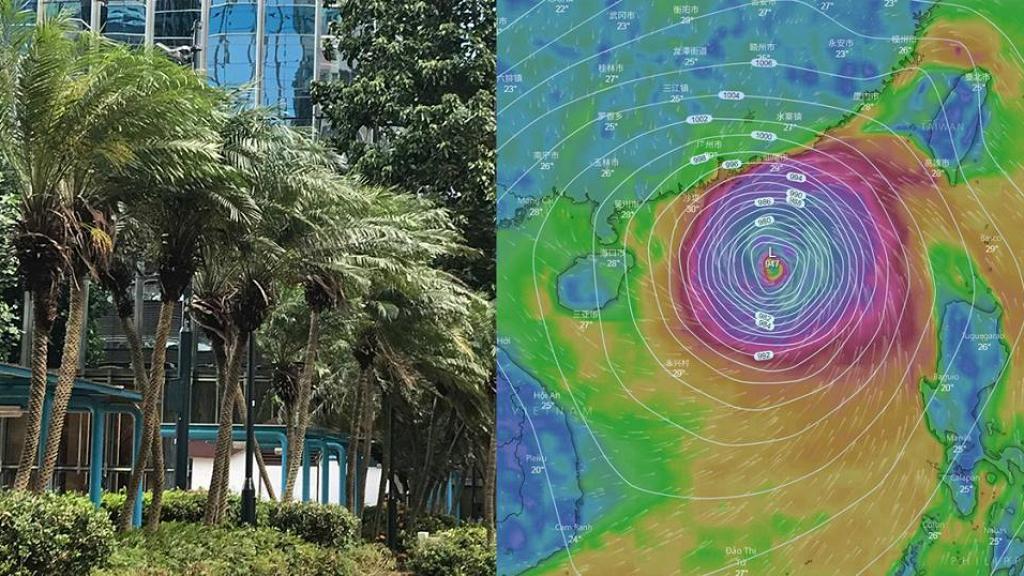 超強颱風點解叫山竹?熱帶氣旋名字原來這樣定!