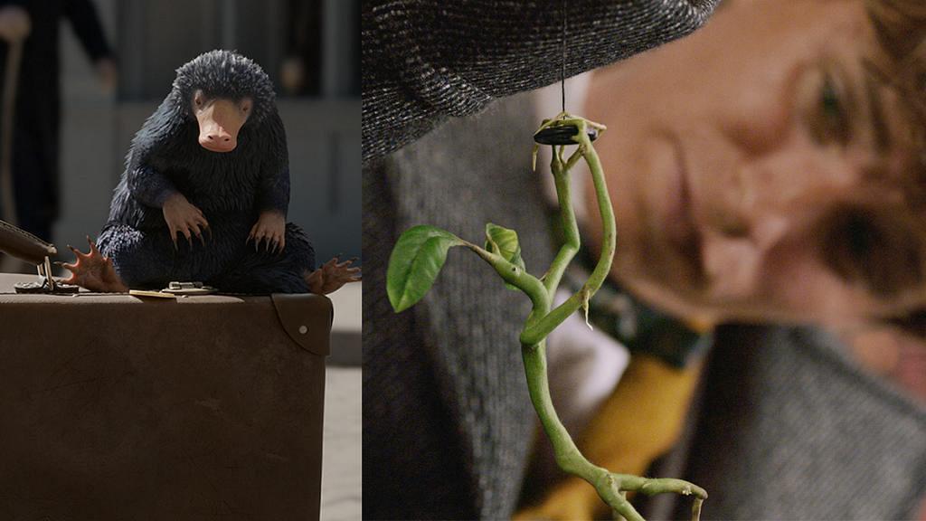 【怪獸與葛林戴華德之罪】玻璃獸、木精繼續賣萌!10隻今集出現的奇獸