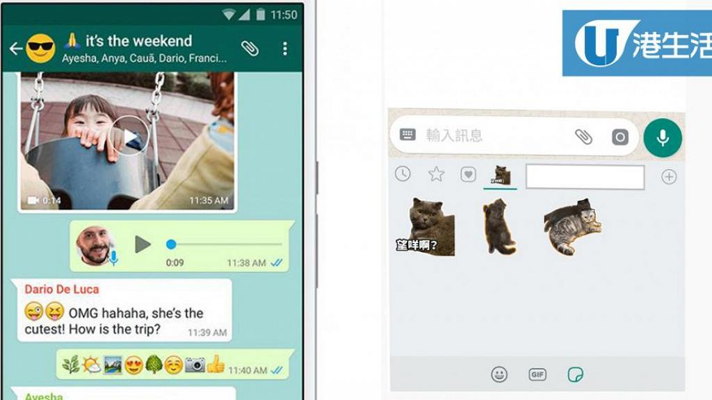 【WhatsApp貼圖教學】輕鬆搵到WhatsApp貼圖! 6步學識sticker分類大法