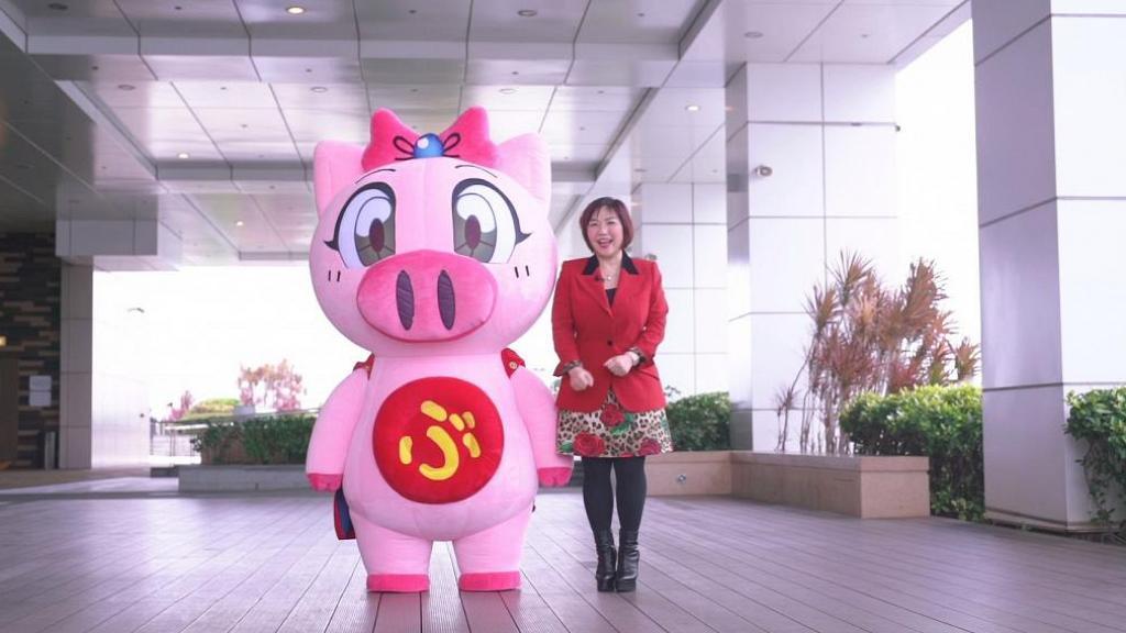 【2019豬年運程】麥玲玲預測12生肖整體運勢!屬龍桃花運旺、屬馬工作財運亨通