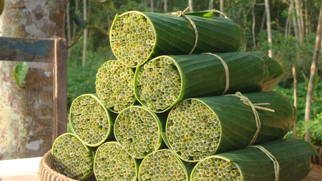 越南推出「蒲草飲管」支持環保走塑 每支$0.2價錢親民+可以全天然分解