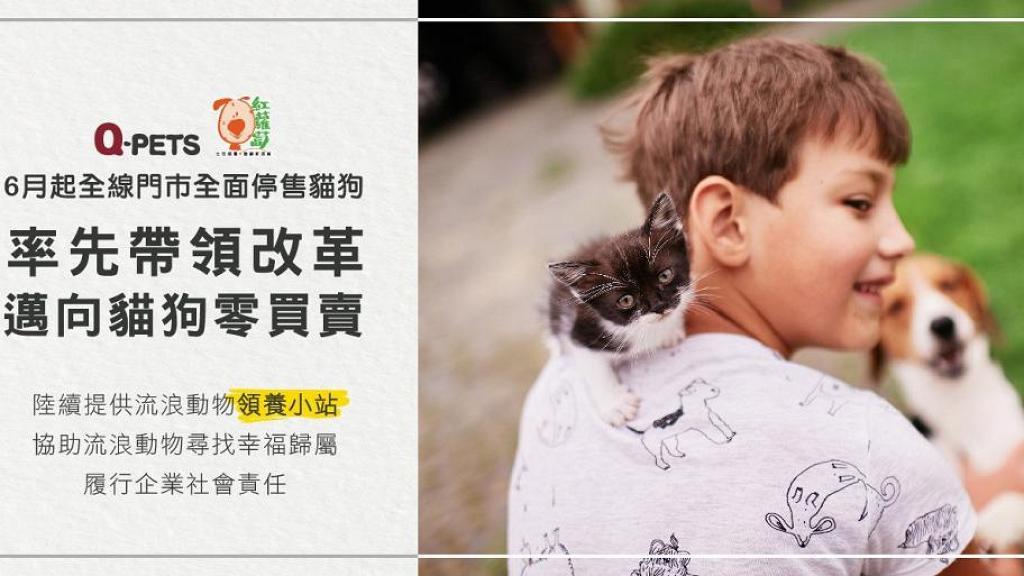 連鎖寵物店Q-PETs宣布全面停售貓狗 增動物領養站幫助被遺棄寵物