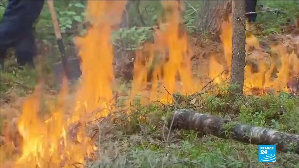不只亞馬遜發生嚴重大火!俄羅斯西伯利亞火災肆虐 火燒面積已不止一個台灣