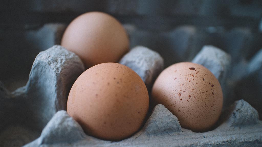雞蛋放雪櫃門蛋格原來係錯誤擺法!日本名廚教正確擺位防止變壞