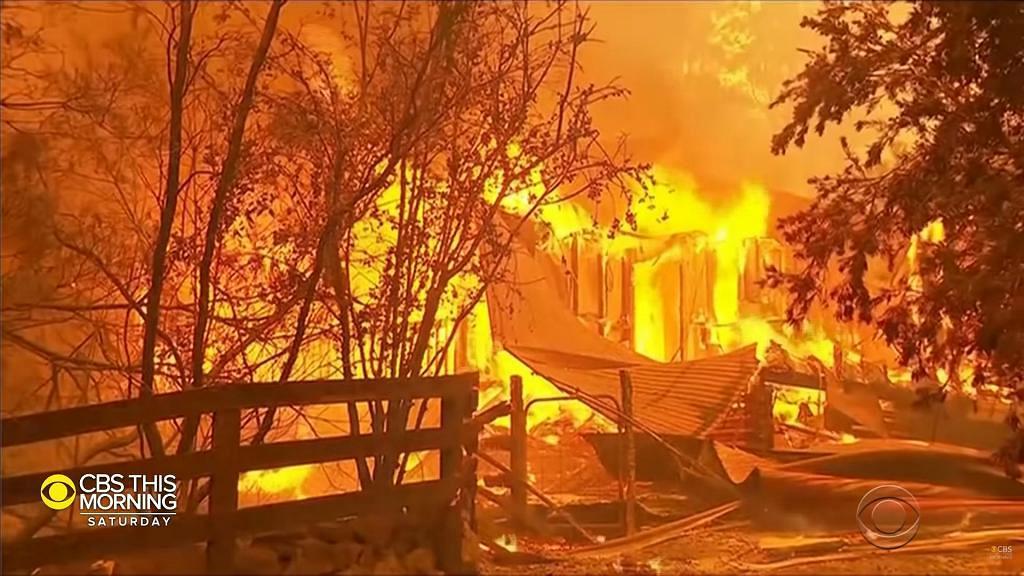 澳洲大火60歲消防員被樹砸中殉職 服務超過40年對救援人員造成沉重打擊