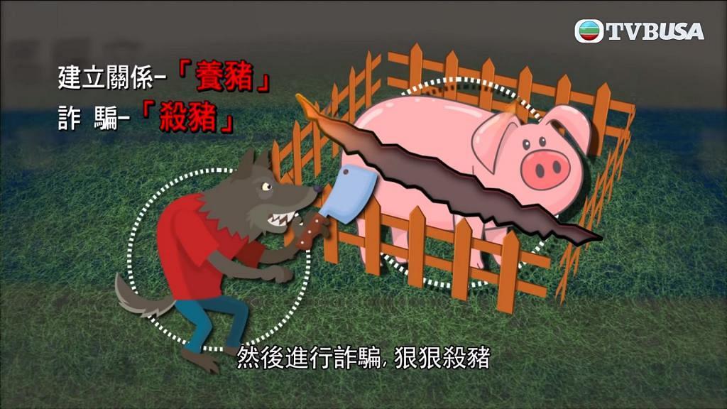 【東張西望】港女玩交友APP墮入殺豬盤騙局 遭內地男子呃錢呃感情被騙2百萬