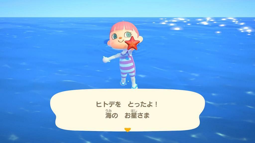 【動物之森/動物森友會】7月免費更新 游水潛水捉海星/美人魚家具/8月煙火大會