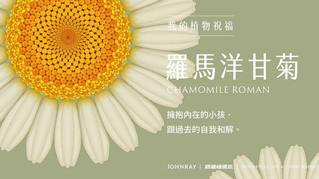 「約翰森林」療癒系心理測驗找回自癒力 憑直覺挑選3種植物解讀此刻真正的自己