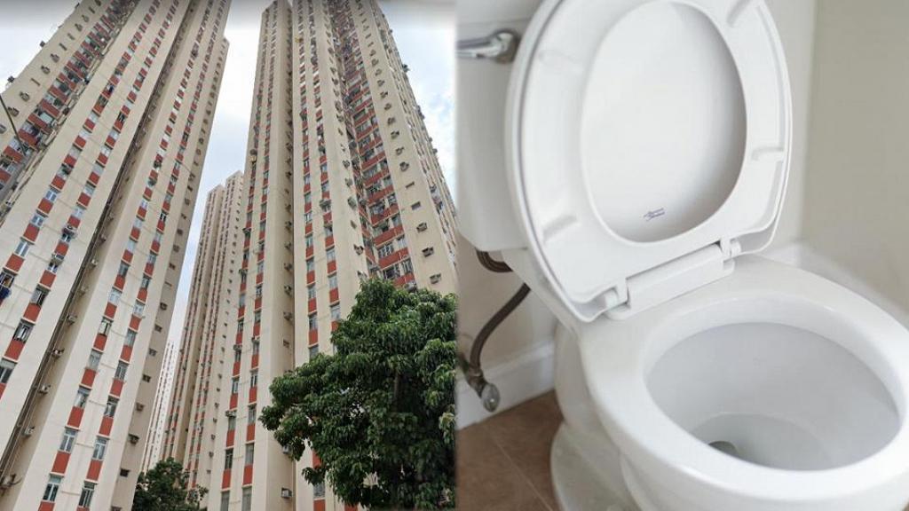 【新冠肺炎】全港95%樓宇渠道設計與麗晶相同 廁所專家+袁國勇教6招廁所防疫