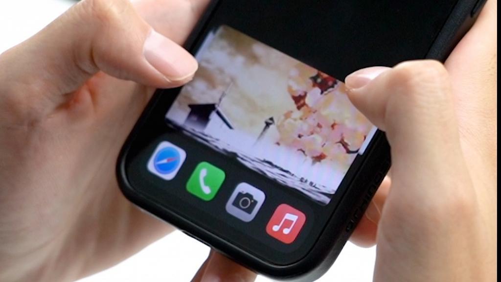 iOS14 4大實用隱藏功能教學 子母畫面/輕點機背截圖/私隱警示燈