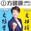 2016立法會選舉 新界東點票結果