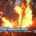 亞馬遜熱帶雨林大火燒近三個星期 森林持續乾旱全球氣候恐有災難性影響