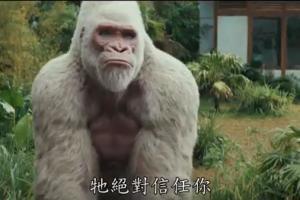 巨石強森新戲《毀滅大作戰》基因異變動物變巨獸破壞地球
