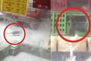 網上瘋傳沙田麵包店變老鼠天堂  店主回應:已馬上安排滅鼠公司