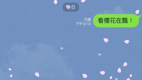櫻花季2日限定!LINE對話視窗飄櫻花