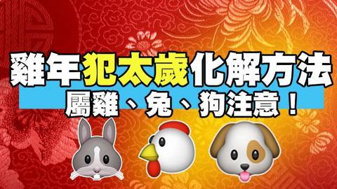 肖雞、兔、狗留意!雞年犯太歲運程及化解方法