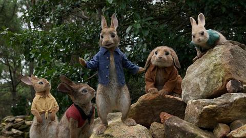 英國兒童圖書改編真人版電影  陳豪、森美為《比得兔》再合體