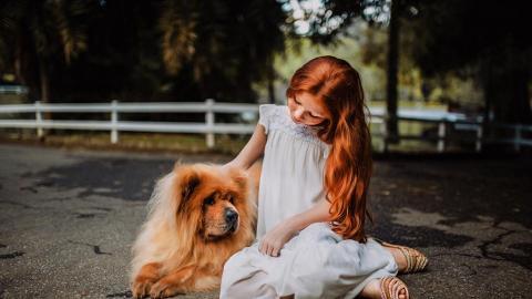 狗似主人型! 狗主性格+性別影響汪星人個性