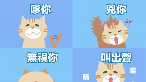 日本超得意心理測驗 用貓星人睇穿你幾時轉工!