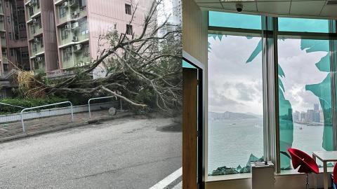 以為風季已完?天文台台長:11月仍有機會受颱風吹襲