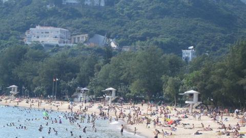 泳灘現海毛蟲可致皮膚紅腫起膿!本港海毛蟲聚集泳灘地址一覽