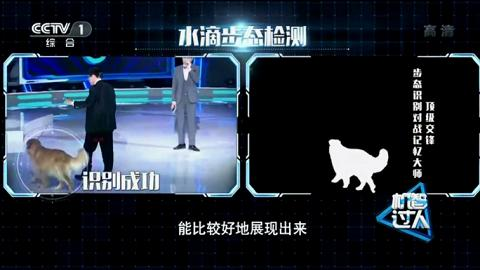 中國AI公司發表全球首個步態識別技術 識破蒙面變裝靠行路姿勢認人