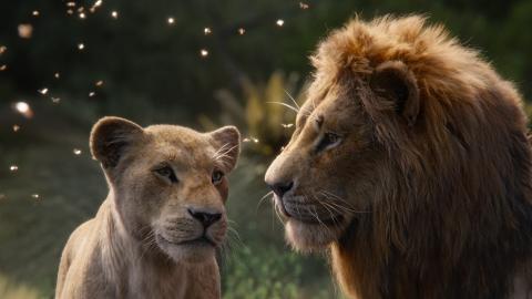 【獅子王】迪士尼推出國際中文版插曲  張學友+Beyonce重新演繹經典情歌