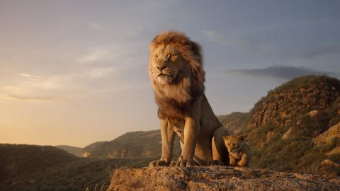 【獅子王】90後爸爸粉絲勸管教孩子睇戲禮儀 「請勿妨礙我和辛巴的相處時光」