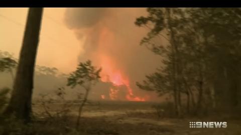 澳洲大火損失嚴重進入緊急狀態!火燒面積達45個香港 近5億動物死亡