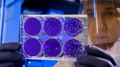 【武漢肺炎】病毒可在物體表面存活9日 德國研究:3種成分有效消毒清潔