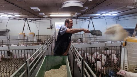 丹麥皇冠屠場142名員工確診新冠肺炎 香港分公司:本港出售產品為6月前生產