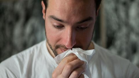 鼻敏感處理不當小心變哨牙、月亮臉!6種天然草藥改善鼻敏感 其中一樣街市都買到