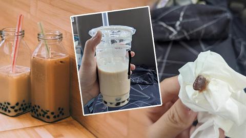 網友分享飲珍珠奶茶吐出曱甴蛋經歷 女子崩潰指不敢喝有珍珠的飲料