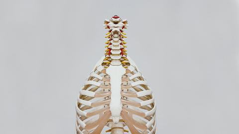 23歲打工仔返工打呵欠胸口突然劇痛 爆肺出血2公升幾乎無命 醫生指1類常見人士最易爆肺