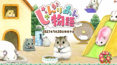 【Switch遊戲】《加卡利亞倉鼠物語》5月20日推出 得意倉鼠育成Game支援繁體中文