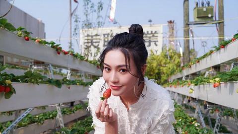 26歲關嘉敏憑ViuTV《全民造星3》人氣急升月入數十萬 倒戈簽約TVB成為大台藝人