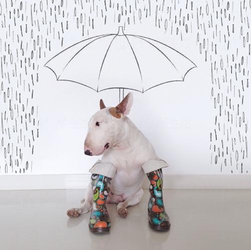 下雨天的憂鬱pose