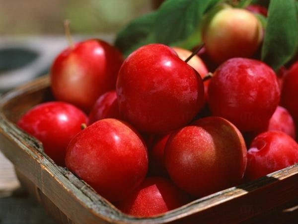 平常用刀切蘋果是常識吧!不過,徒手開蘋果的鬼斧神工,你又見過未呢?以下立刻為你示範,只需3個步驟,就輕鬆有蘋果食!