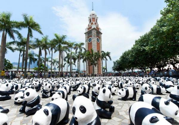 1600隻紙糊熊貓