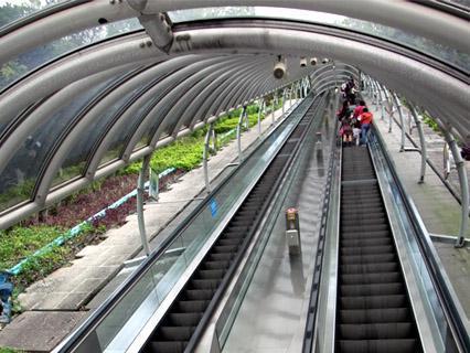 搭扶手梯要小心 香港這幾條超長電梯,用時就不好玩電話了(圖:海洋公園官網)