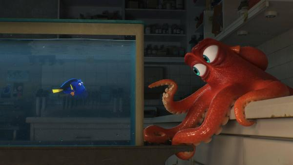 Finding Dory(圖:FB@Finding Dory)