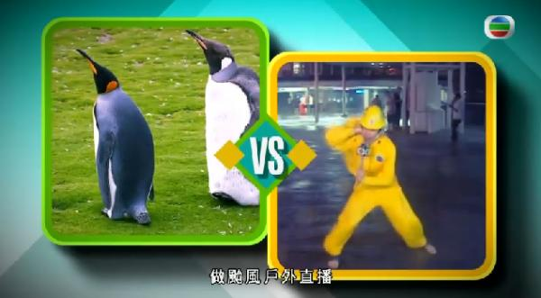 方東昇於節目內盡顯搞笑本色,仲用企鵝抽潘蔚林水!圖:《世界零距離II》mytv 擷圖