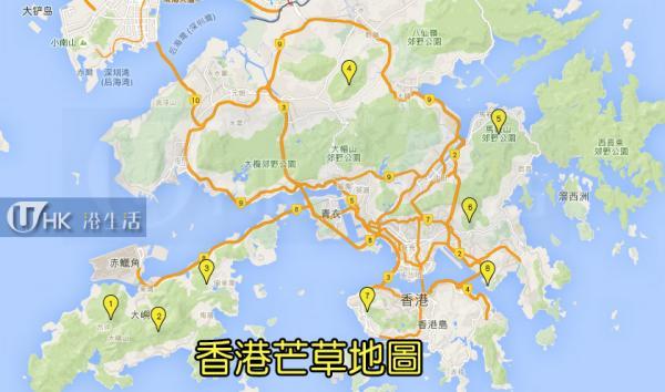 天涯何處無芒草 香港芒草地圖