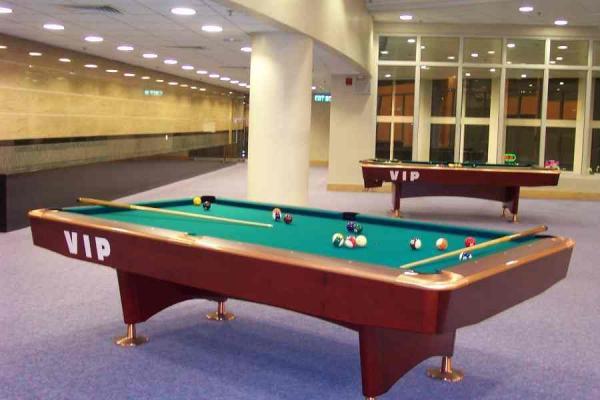 一張檯每小時$30!康文署11個設桌球室的體育館