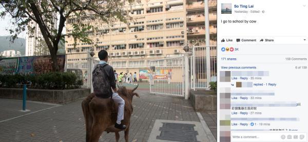 FB傳瘋「屯門牛照」!大學生諷刺香港人對屯門誤解獲網民勁讚